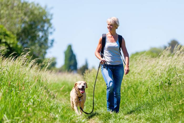 wandelende-vrouw-met-hond-klein-bron-shutterstock.jpg